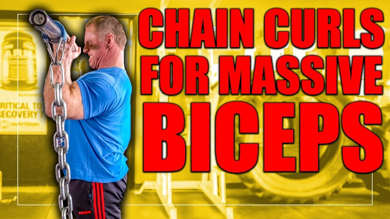 """Get """"MASSIVE"""" Biceps with Chain Curls   Exercise Index"""